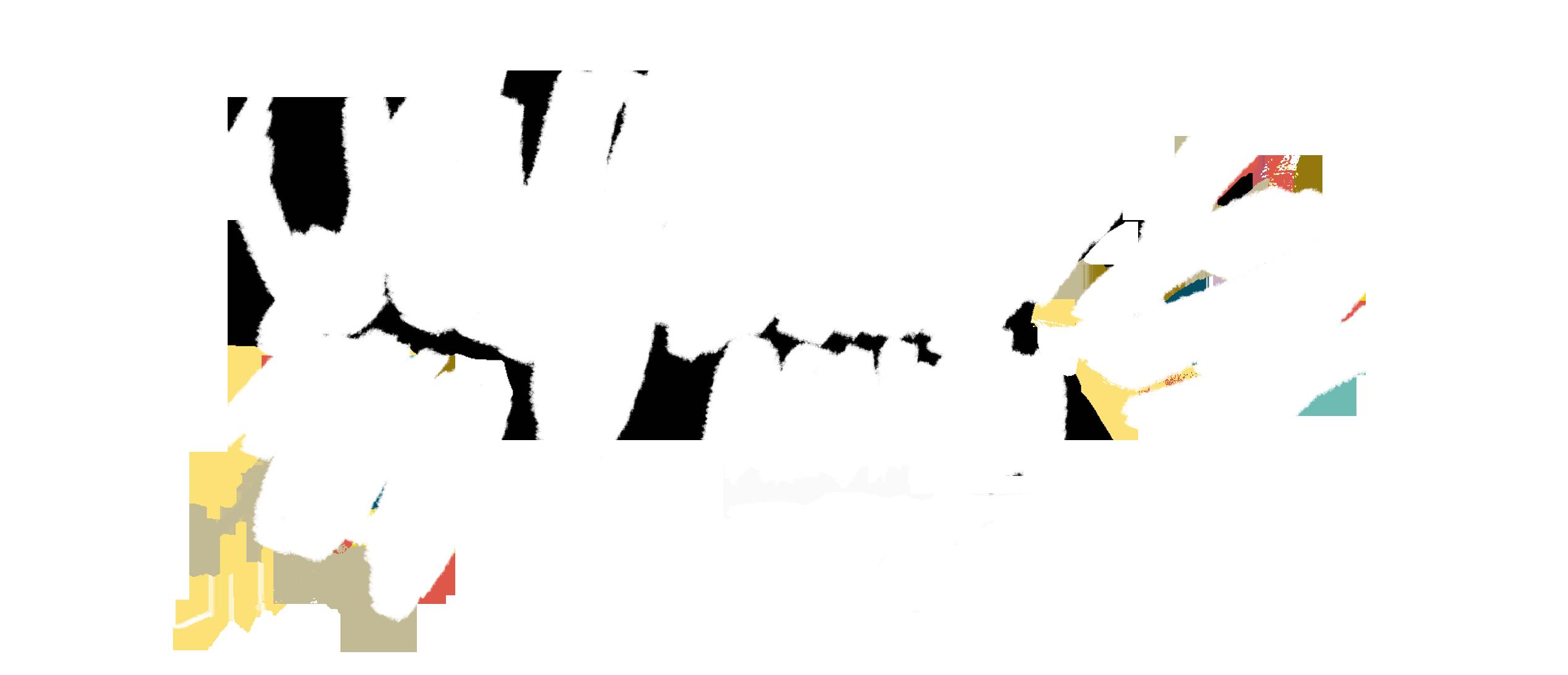 Wildflower Weddings & Portraits